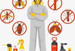 شركة متخصصة في مكافحة الحشرات